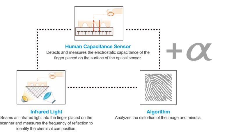 مراحل تشخیص اثر انگشت تقلبی و زنده