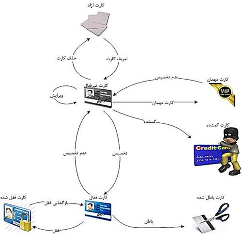 انواع کارت در نرم افزار تغذیه تحت وب